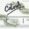 Pots of Colour! April 20...